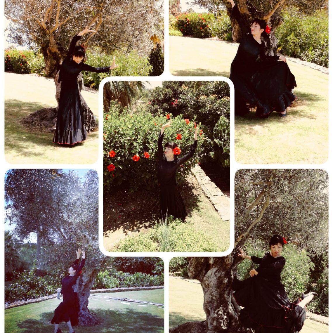 オリーブの木の下で踊る中村明日香 I danced under the olive tree
