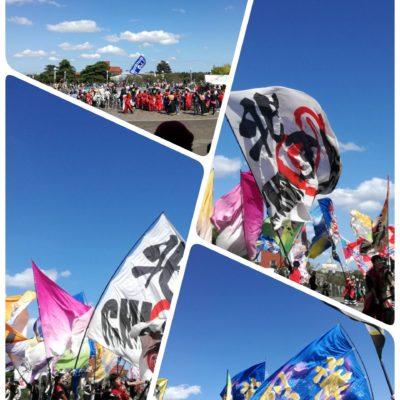 参加チームの大旗の共演