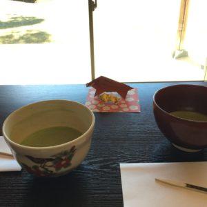 庭園を眺めながらお茶を一服