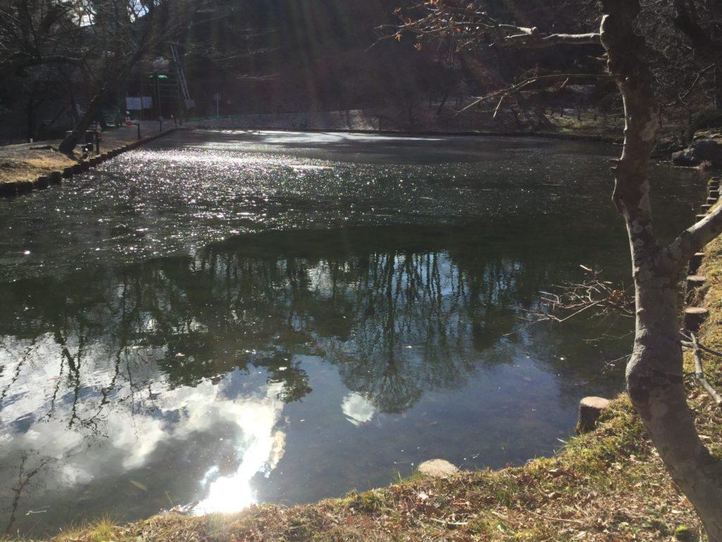 るり池。ちょっと凍ってました。