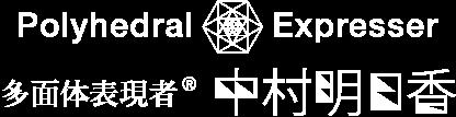 Polyhedral Expresser 多面体表現者 中村明日香